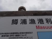 masuuRIMG0053.jpg