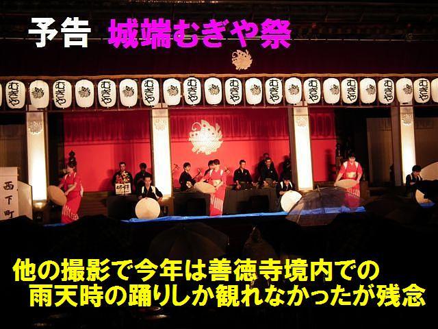 BLOG予告編 (4)