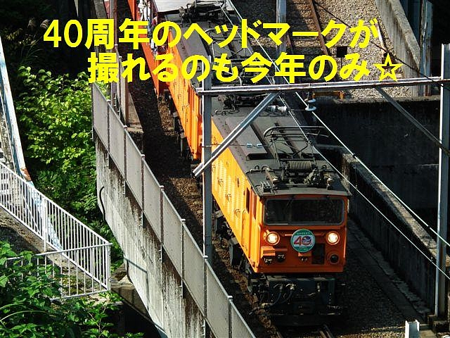 40th出会い (7)