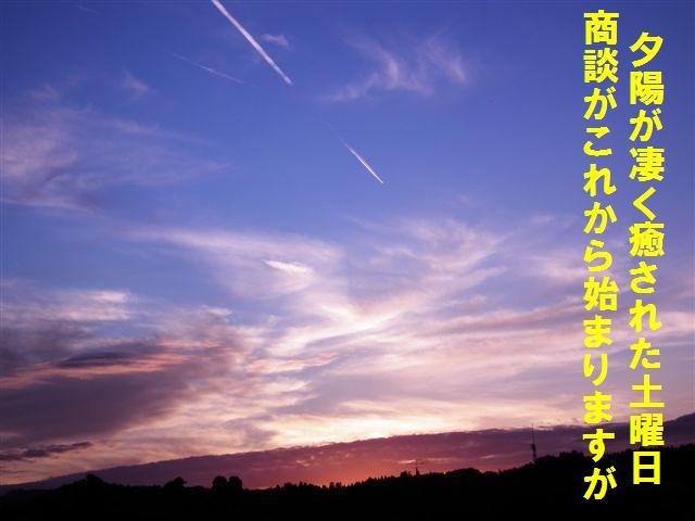 夕陽観賞効果 (1)
