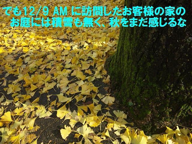 富山県内平野部初雪 (3)