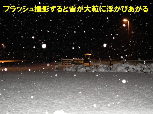 今晩の氷見市は (3)