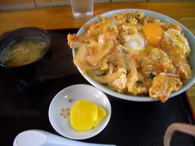 さつま丼2