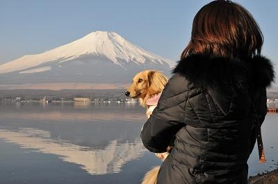 富士山DSC_4053s-