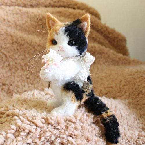 三毛猫テディ2