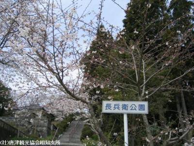 banzui2008040401.jpg