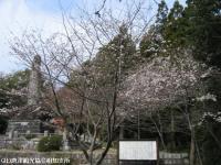 banzui2008040403.jpg