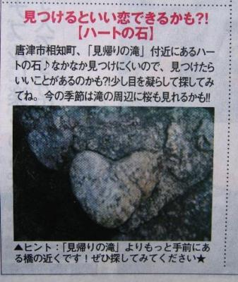 heart2008060301.jpg