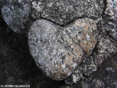 heart2008060306.jpg