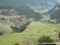 tanada2008032104.jpg