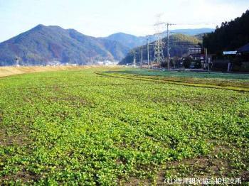 yamasaki2008020901.jpg