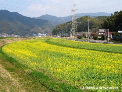 yamasaki2008032305.jpg