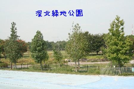091013a.jpg