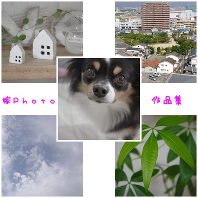 091020a.jpg