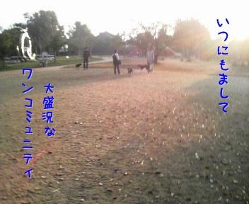 091101c.jpg