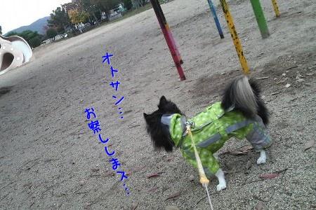 091113h.jpg
