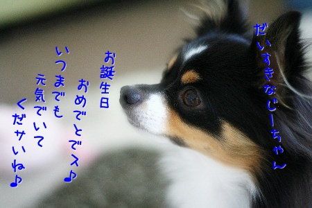 091125e_20091125095527.jpg