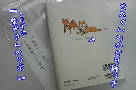 091216d.jpg