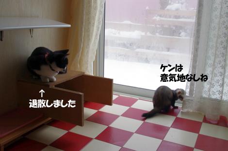 2011112206.jpg