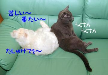 DSCF4261.jpg