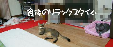 DSCF6789.jpg