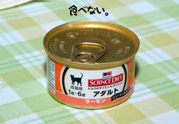 DSCF7508.jpg
