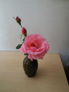 201111131124001.jpg