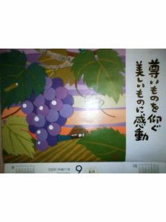 090901_200451.jpg