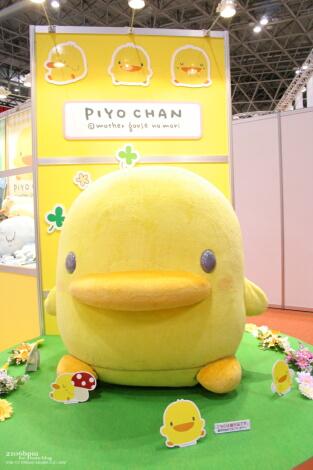 PIYO CHAN_01