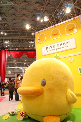 PIYO CHAN_03