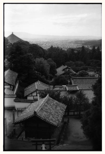 toudaiji2010_10.jpg