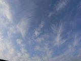 P1170753_20081214011004.jpg