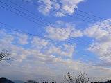 P2010684.jpg