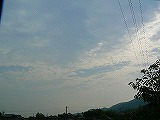 P2170804.jpg
