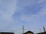 P2170924.jpg