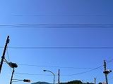P2190009.jpg
