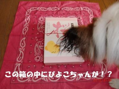 012_convert_20120315215641.jpg