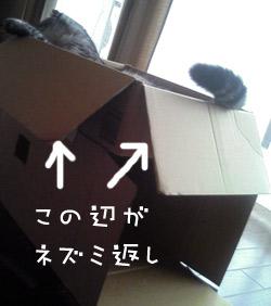 0710_4.jpg