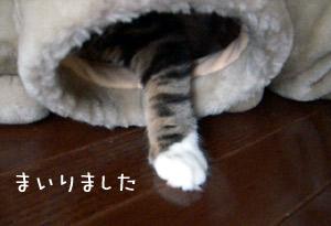0720_5.jpg