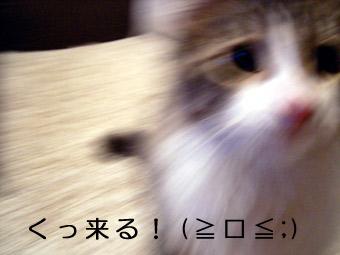 0728_3.jpg