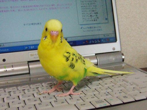 2008_0620_0023.jpg