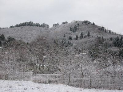 IMG_0475今日の山