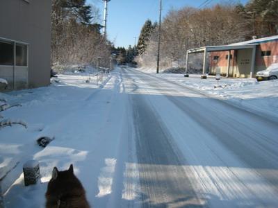 IMG_1459圧雪凍結