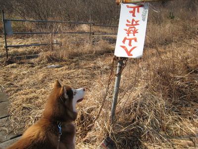 IMG_2024散歩