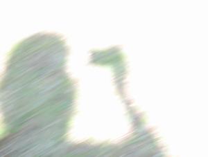 IMG_6424母ちゃん