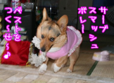 いくわよ、ひろみ(?)