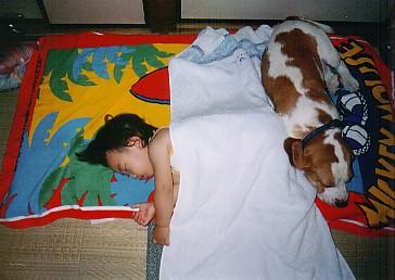寝る子は育ちすぎた