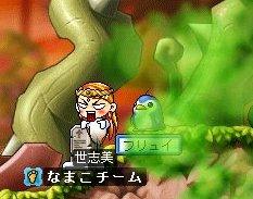 亀で墓><
