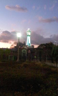 20111217-5.jpg