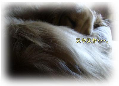 200906201.jpg